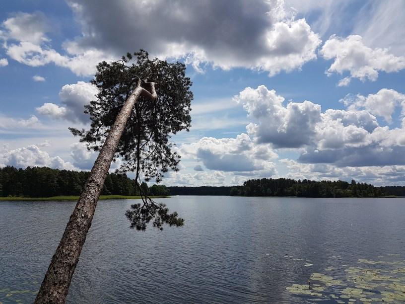 litouwen nationaal park