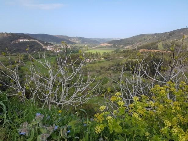 Aljezur castelo view