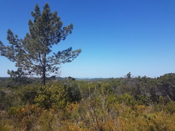 Bordeira hidden lakes walk