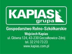 logo_Grupa_Kapis