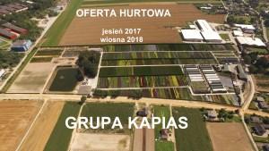Nowa oferta hurtowa Jesień 2017-Wiosna 2018