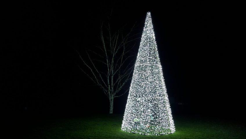 Grupa Kapias - Wesołych Świąt