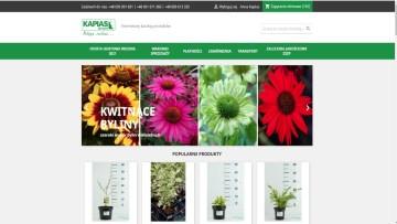 Zamów rośliny na wiosnę już teraz!