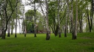 Grupa Kapias park w Goczałkowicach-Zdroju
