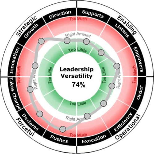 Image result for leadership versatility index