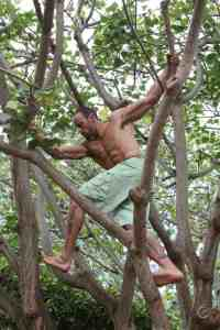 Gabe Kapler in a tree