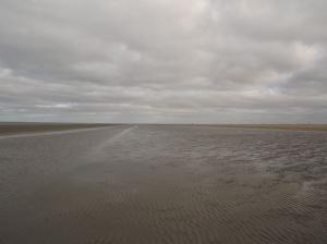 8,5 km long