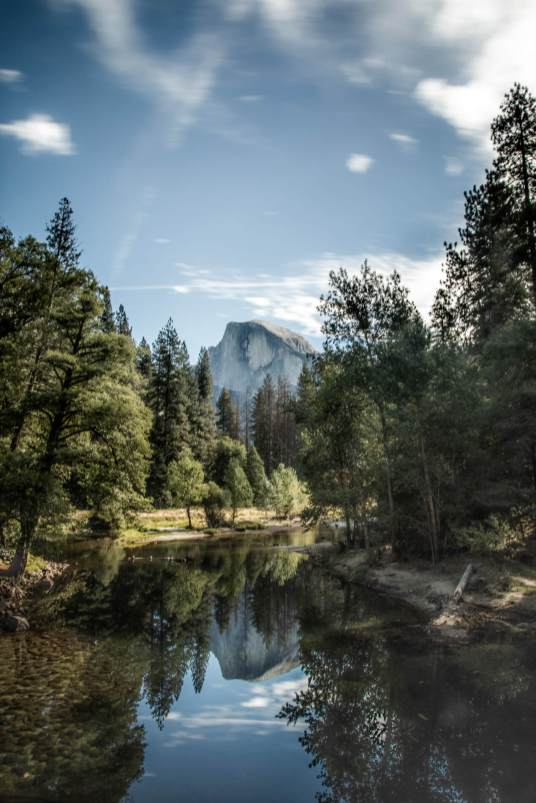 yosemite trip, yosemite trees, off the beaten path yosemite, yosemite hikes, yosemite instagram ideas