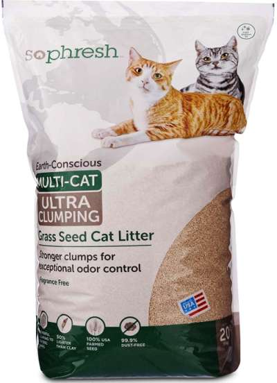 10 Organic Amp Natural Cat Litter Brands Safe For Your Cats