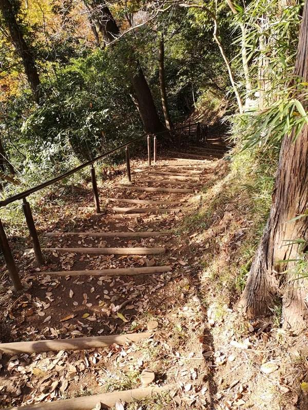 泉自然公園階段