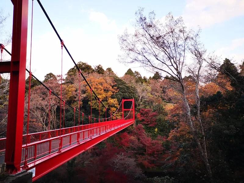 泉自然公園綺麗な橋