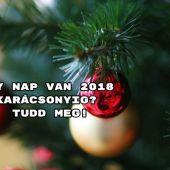 Hány nap van 2018 karácsonyig? Írásunk végén kiderül.