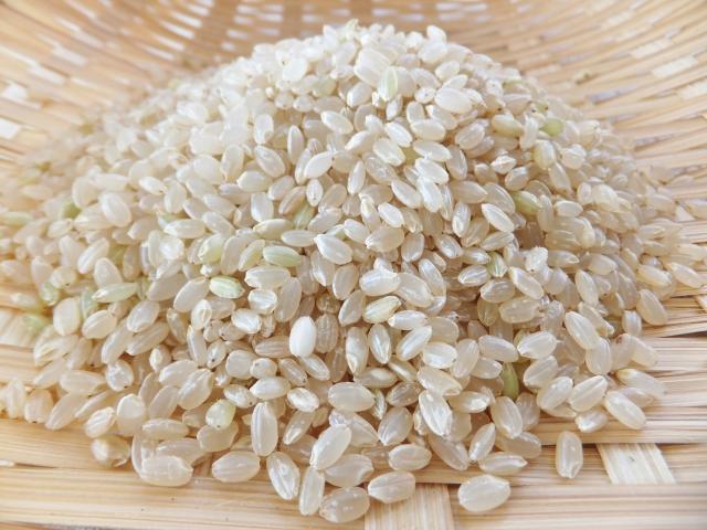 玄米のいろんな保存方法!試して美味しい毎日の健康習慣!