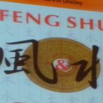 International Feng Shui convention