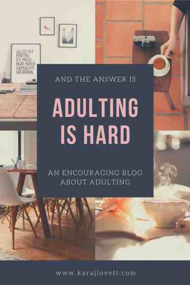Because Adulting is Hard - 3