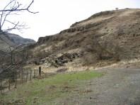 Magden Flock on a Distant Hill 2003