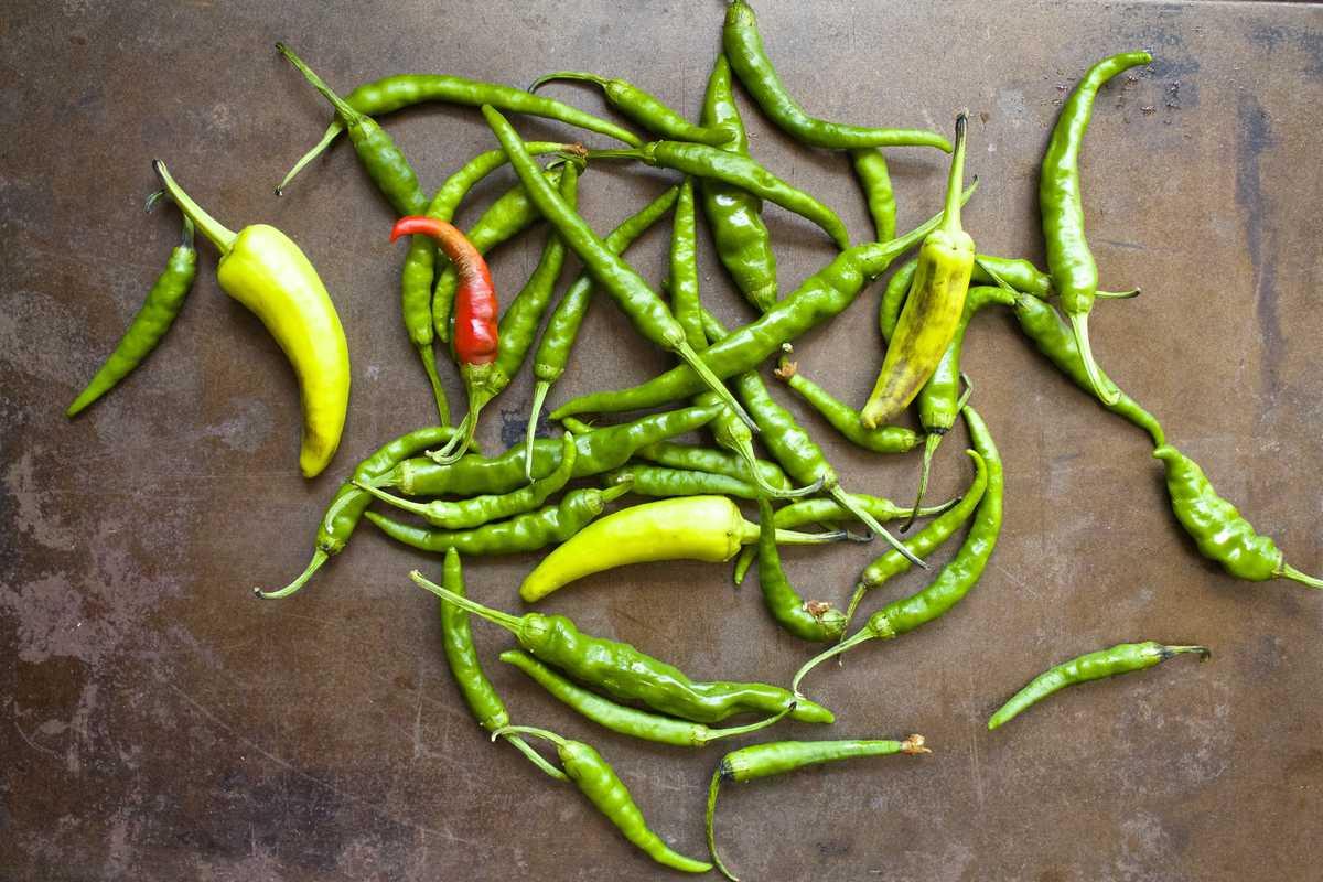 Crispy Thai Brussels Sprouts | The Foodie Dietitian @karalydon