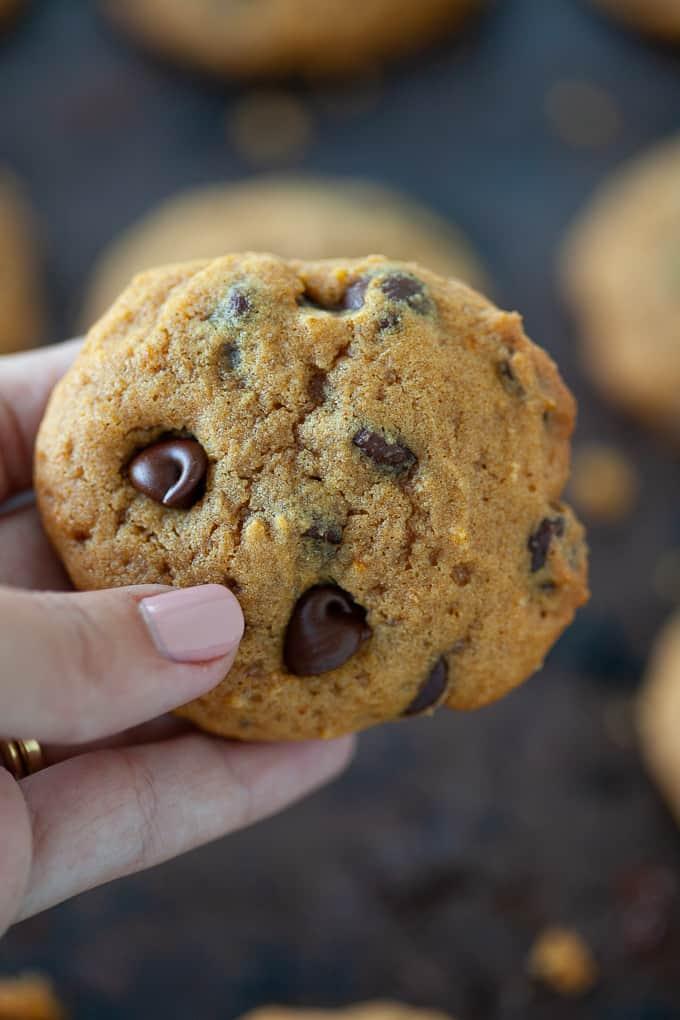 fresh chocolate chip pumpkin cookie