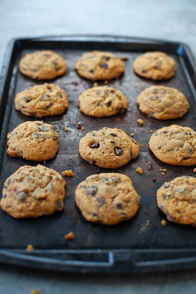 chocolate chip pumpkin cookies fresh out of the oven