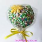 Cake-Pop I OK