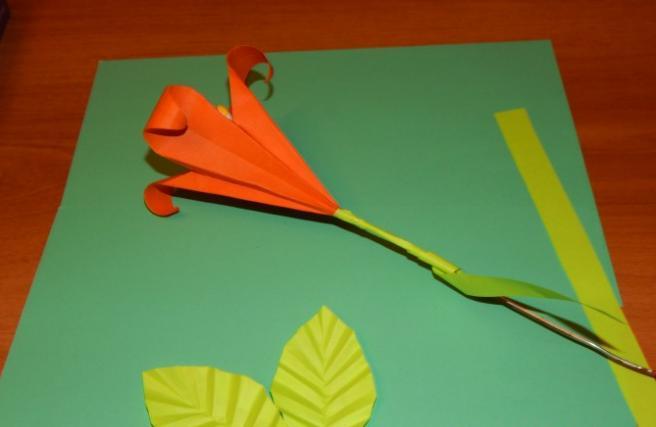 Paper Flowers & # 8212; Mga scheme at mga template para sa paglikha ng mga kulay ng papel na yugto 124.