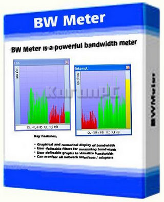 DeskSoft BWMeter Full Version