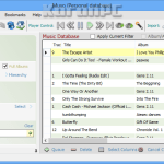 Muso 2.3.23 Build 2.3.23.0 + Key