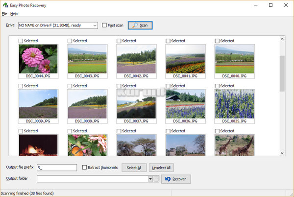 eWorld Easy Photo Recovery 3