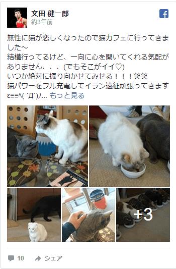 文田健一郎 彼女 動画 レスリング プロフィール 父