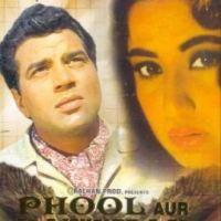 phool aur pathar