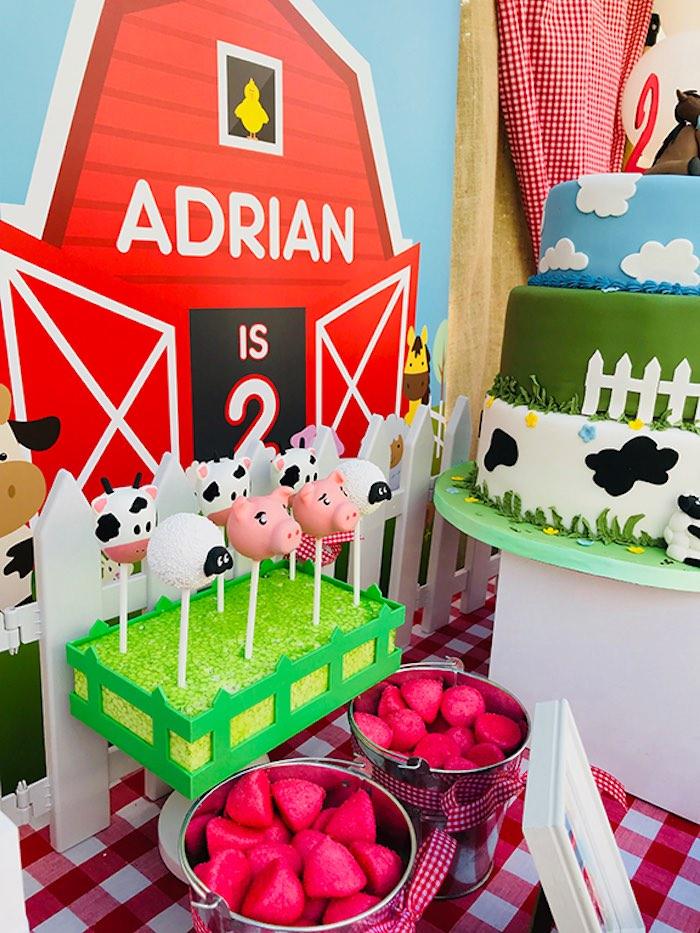 Kara S Party Ideas Barnyard Farm Birthday Party Kara S Party Ideas