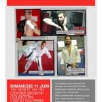Réservez aussi votre dimanche 11 juin: stage multi arts martiaux