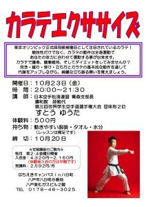 カラテエクササイズ体験会・H27.10-001