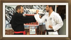 karate on zoom