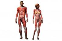 musculos-por-dentro-deportista_thumb_d
