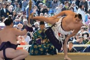 Sumo-japonés-360x240