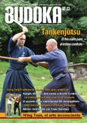 budoka25-141231192817-conversion-gate02-thumbnail