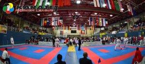 karate1-premier-salzburg-2015-117