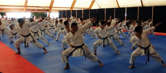 wkf-youth-training-camp-karate-1-youth-cup-to-showcase-karates-impressive-impact-among-youngsters-293