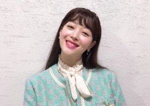 Read more about the article SULLI