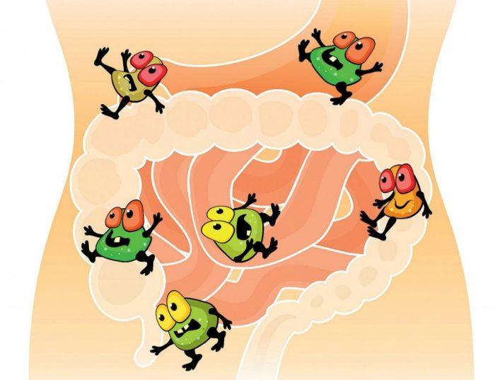 дисбактериоз и паразиты