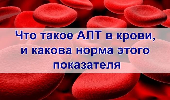 Что такое АЛТ в крови
