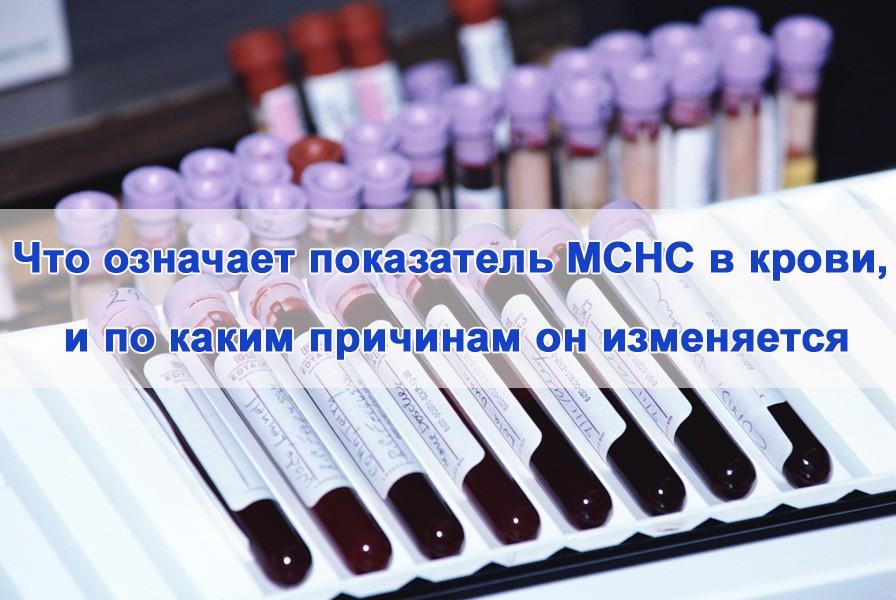 Показатель MCHC в крови