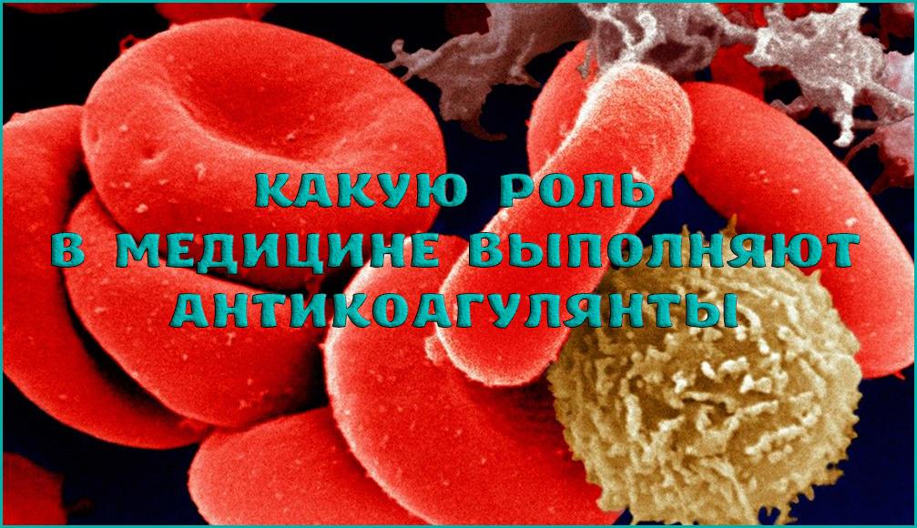 Антикоагулянты и их применение в медицине