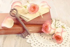 Fresh roses with old book