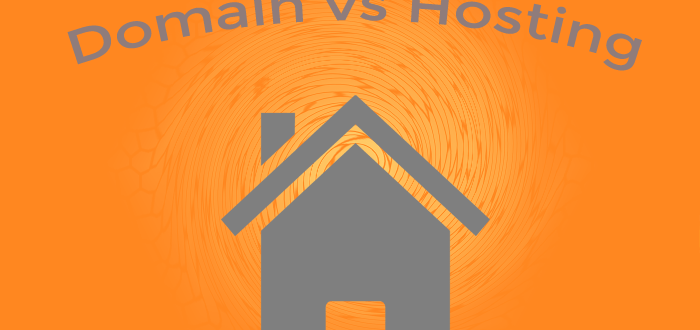 Domain vs Hosting