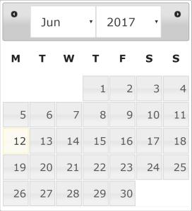 Datepicker UI