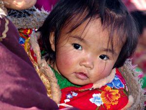 tibetan-girl