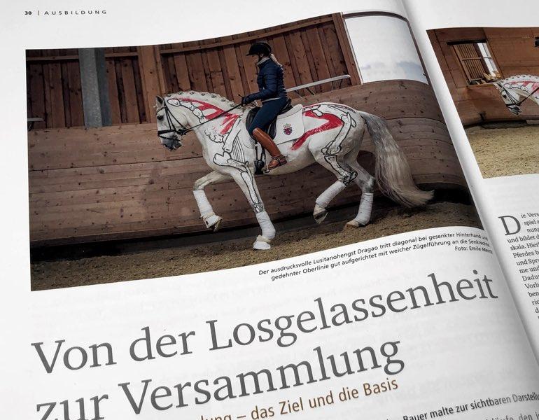 Versammlung Dragao Pferdesport Journal Biomechanik Dressur