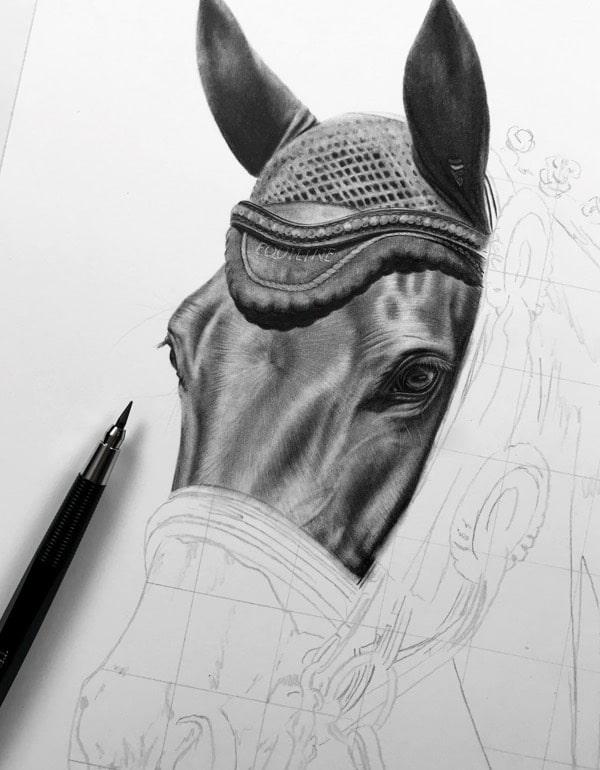 Pferd zeichnen lassen